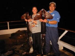 GiantSquids